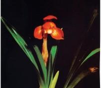 만물(꽃1경)